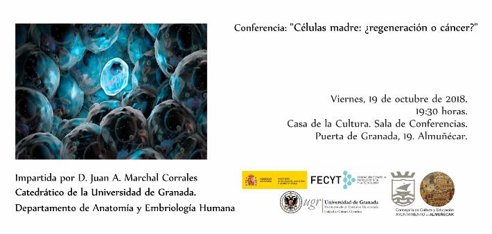 El Catedrático de Anatomía y Embriología Humana de la UGR Juan ...