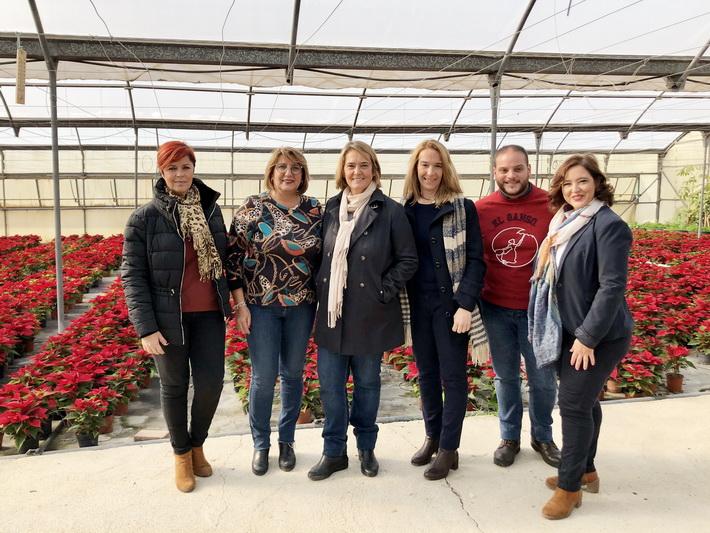 Del vivero municipal saldrán 4.500 flores de pascua para adornar de navidad los parques y jardines de Motril.
