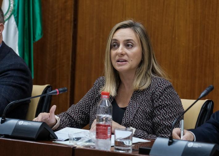 Carazo achaca la paralización de la carretera Loja-Ventorros a los fallos del proyecto anterior