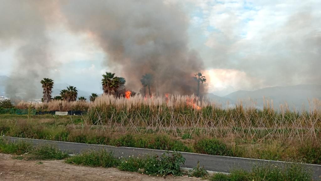 Controlado este domingo un incendio en la vega de Salobreña.