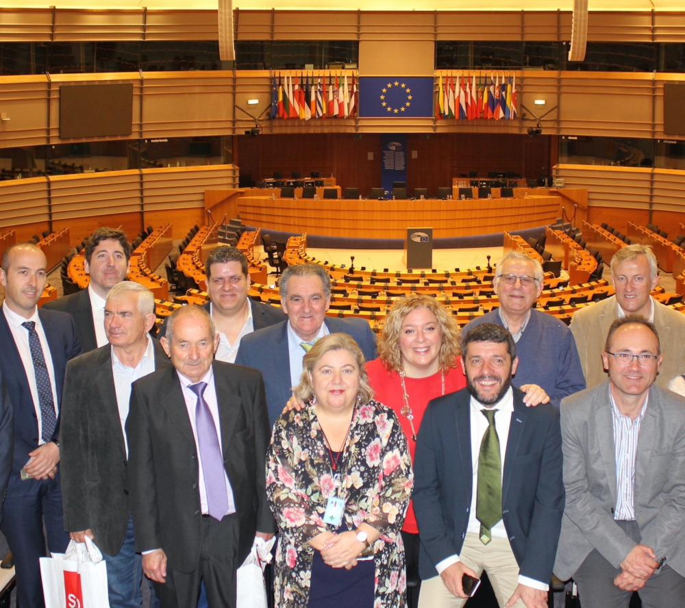 """Flor Almón destaca, en el Día de Europa, """"la contribución europea al desarrollo del Motril de los últimos años"""""""