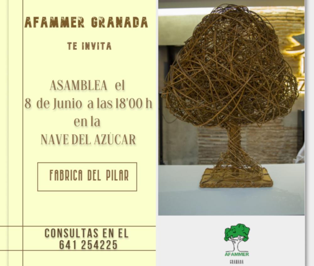Afammer Granada celebra su asamblea provincial el próximo 8 de junio