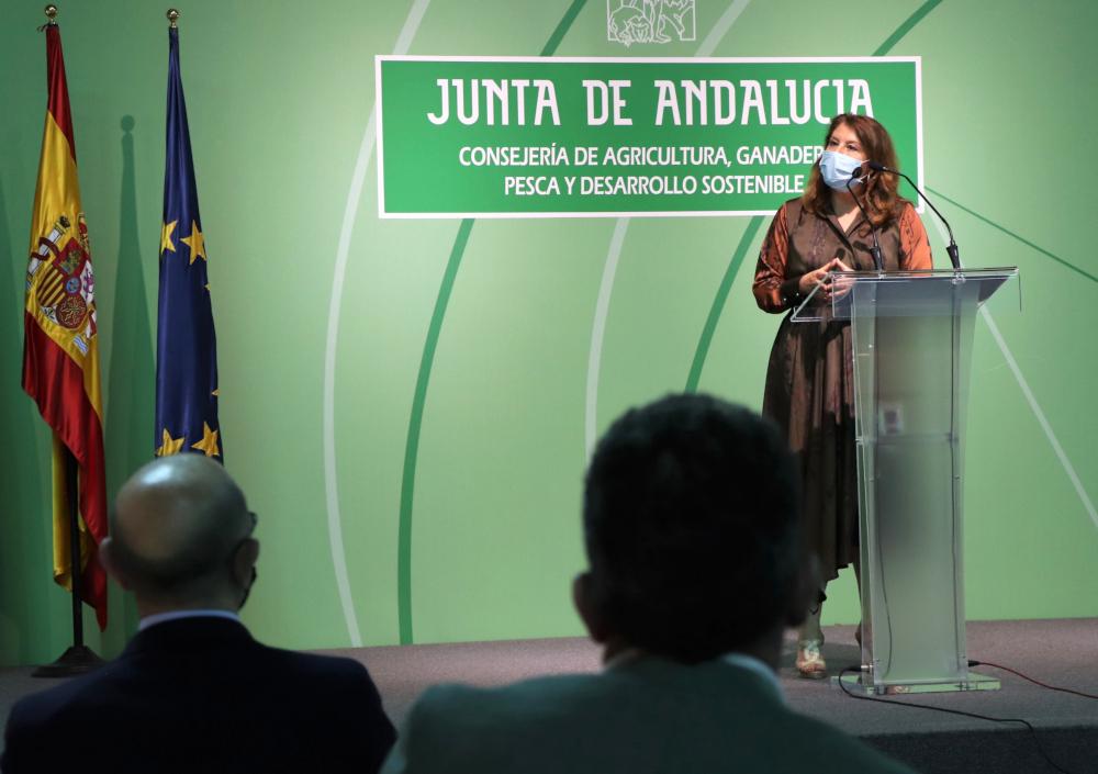 La Junta moviliza 60 millones en dos años para modernizar y ganar eficiencia en los regadíos